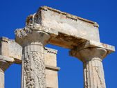 Doric Order Column — Stock Photo