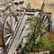 Stock Photo: Old Hand-cart - Matera