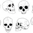Skulls set — Stock Vector #38631535