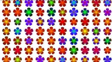 Disco flowers — Stock Video