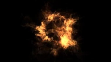 Fire circle — Stock Video