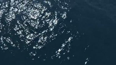 Sea horizon — Stock Video