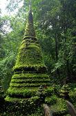 Moss Stupa — Stock Photo
