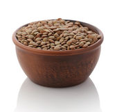 Bowl of dried brown lentils — Stock Photo