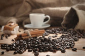 A hot cup of espresso with coffee beans and Cake — Foto de Stock