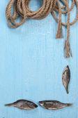 Quadro de peixe seco e corda torcida — Fotografia Stock