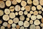 Pozadí suché dřevo nasekané protokolů navršené eac — Stock fotografie