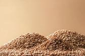 Heap of a wheat grain — Stock Photo