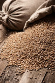 Sacks of grain on old boards — Stock Photo