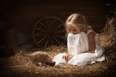 Girl with a kitten on hay — Stock Photo