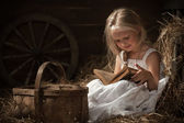 Girl with a book in the hay — Stock Photo