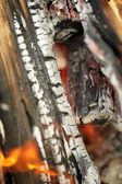 Logs in fire — Stock Photo