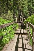 Starý žebřík — Stock fotografie