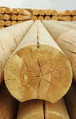 Cylindrical logs — Stockfoto