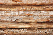 Background from round logs — Stock Photo