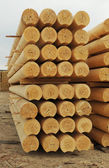 Cylindrical logs — Foto Stock