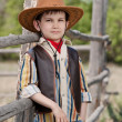 Boy in cowboy suit — Stock Photo #43988015