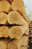 Cylindriska loggar — Stockfoto