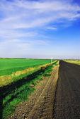 绿草如茵的球场上 — 图库照片