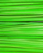 Wheat straw — Stock Photo