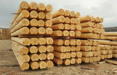 Cylindrical logs — 图库照片