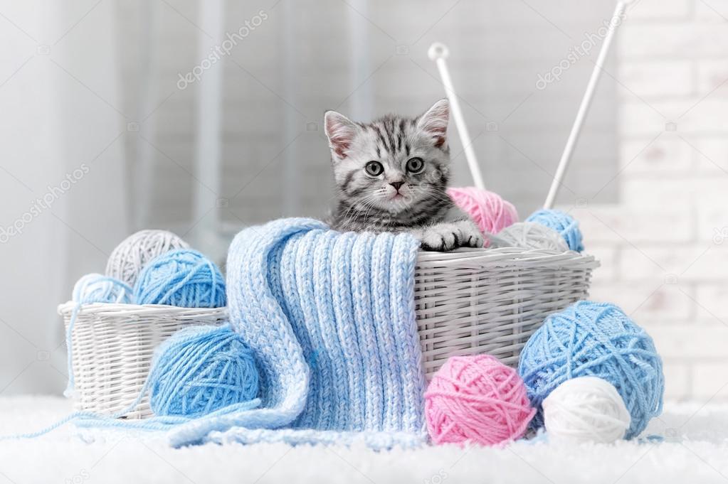 Картинка для вязания кот