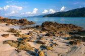 Beautiful sea at tropical island, Koh Lipe — Stock Photo
