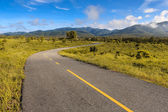 Beautiful countryside road in green field under blue sky — Stock Photo