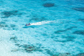 Speed boat in crystal clear tropical sea — Stock Photo