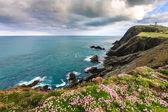 Cliff under cloudy sky — Stock fotografie