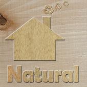 Eco-casa — Foto de Stock