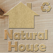 Eco-House — Stock fotografie