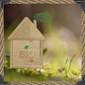 Natural house — Stock Photo