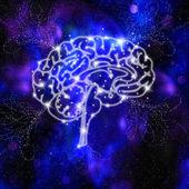 Brain Intelligence — Stock Photo