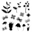 Stock Vector: Plants black white