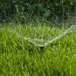 Stock Photo: Sprinkler Water