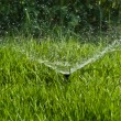 Sprinkler Water — Stock Photo #38827255