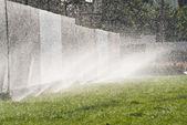 Sprinkler Water — Stock Photo