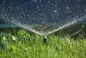 自动喷水灭火水 — 图库照片