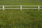 White fence on the lawn — Stock Photo