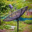 Satellite dish in forest — Stock Photo #38884667