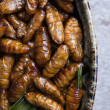 Fried silk worms — Stock Photo #38885913