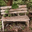 Old wood garden Bench, — Stock Photo