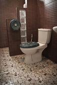 Flush toilet — Stock Photo