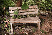Old wood garden Bench, — Foto Stock