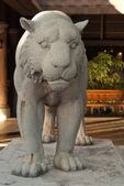Tiger statue. — Stock Photo