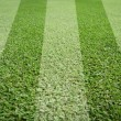 Stock Photo: Soccer field