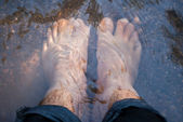 Mergulhe os pés — Foto Stock