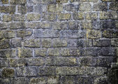 Wall from stones. — Stock Photo
