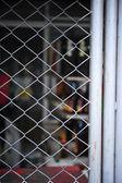 Mesh fence — Stock Photo
